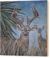 Berry Buck And Doe Wood Print