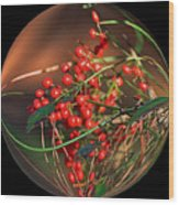 Berry Globe Wood Print
