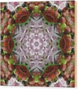 Berry Kaleidoscope Wood Print
