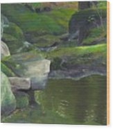 Beside Cool Waters Wood Print