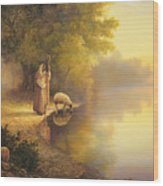 Beside Still Waters Wood Print by Greg Olsen