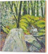 Beside The Routeburn Wood Print
