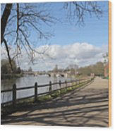 Beside The Thames At Hampton Court London Uk Wood Print