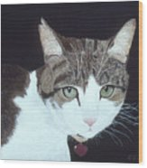 Best Cat Wood Print