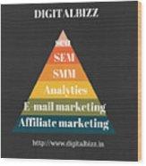 Best Digital Marketing Institute In Ameerpet Hyderabad Wood Print