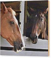 Best Friends Horse Chat Wood Print