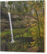 Best Of Silver Falls Wood Print
