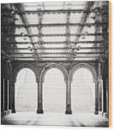 Bethesda Terrace In Black And White Wood Print