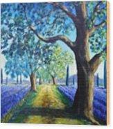 Between The Lavender Fields Wood Print