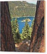 Between The Pines Wood Print