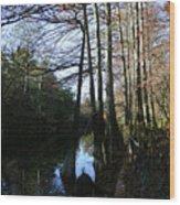 Between Trees Wood Print