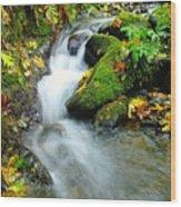 Betwixt The Mossy Rocks Wood Print