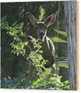 Beverly Hills Deer Wood Print