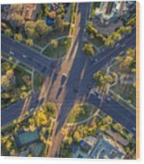 Beverly Hills Streets, Aerial View Wood Print