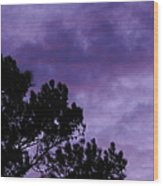 Beyond Dusk In The South Wood Print