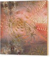 Beyond Solipsism Wood Print