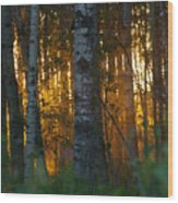 Beyond The Beaver Pond Horizontal Wood Print