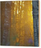 Beyond The Beaver Pond Vertical Wood Print