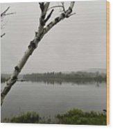 Beyond The Birches Wood Print