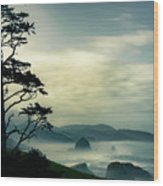 Beyond The Overlook Tree Wood Print