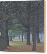 Beyond The Pines Wood Print