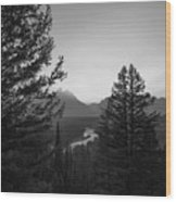 Beyond The Trees Bw Wood Print