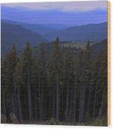 Beyond The Trees Wood Print