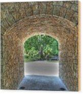 Beyond The Tunnel Wood Print