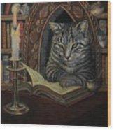 Bibliocat Reads To His Friends Wood Print
