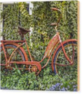 Bicycle In The Garden Wood Print