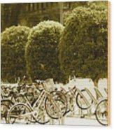 Bicycle Park 2 Wood Print