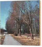 Bicycle Path Wood Print