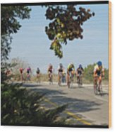Bicycle Race Wood Print