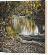 Bidwell Park Reflection Wood Print