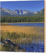 Bierstadt Lake Shoreline 2 Wood Print
