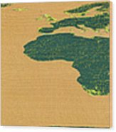 Big Abstract World Map  Wood Print