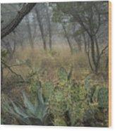 Big Bend Fog On Lost Mines Trail Wood Print
