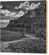 Big Bend National Park Wood Print
