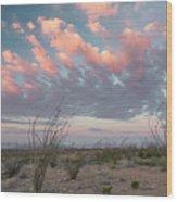 Big Bend Sunrise-blooming Ocotillo Wood Print