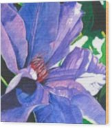 Big Blue Clematis Wood Print
