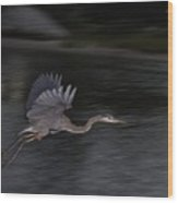 Big Blue Heron In Flight-debbie-may Wood Print