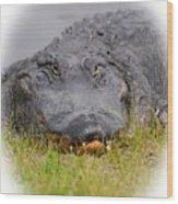 Big Boy Gator 2 Wood Print