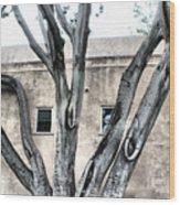 Big Branch Wood Print