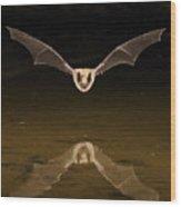 Big Brown Bat Reflection Wood Print