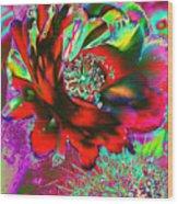 Big Cactus Flower Wood Print