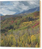 Big Cottonwood Canyon Fall Colors Wood Print