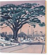Big Cypress Half Moon Bay Wood Print by Donald Maier