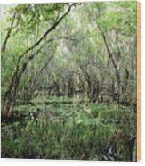 Big Cypress Preserve Wood Print