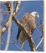 Big Eagle Wood Print