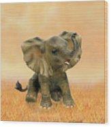 Beautiful African Baby Elephant Wood Print